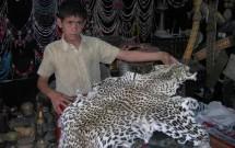 Sana'a Suq, June 30, 2009