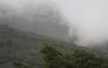 Hawf Cloud Forest during the monsoon